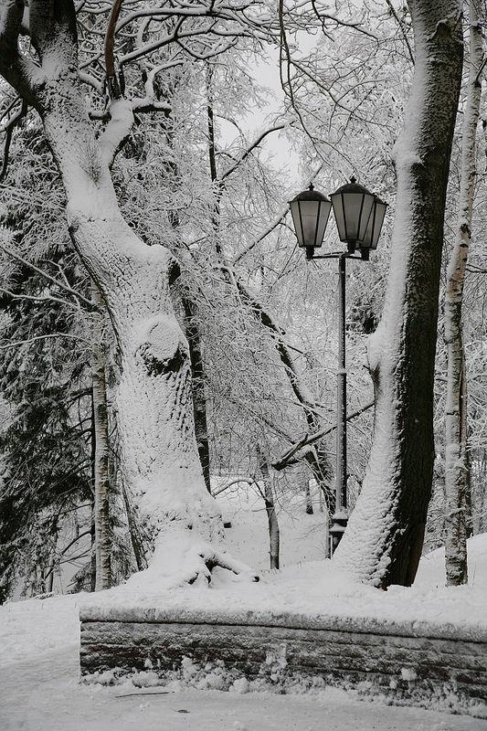 http://www.pravoslavie.ru/gallery/images/76/15827.d.jpg
