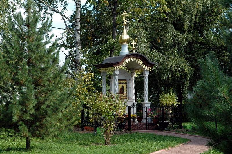 Кедровая роща Толгского монастыря, основанная Иоанном Грозным