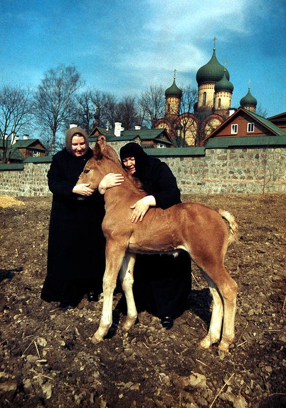 http://www.pravoslavie.ru/gallery/images/91/2412.d.jpg