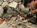 Настоящая археологическая сенсация в Беларуси, найдена неизвестная крипта и два древних саркофага с мощами (ВИДЕО)