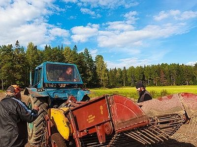 From 1939 on Valaam's arable land was overgrown with tall weeds and underbrush. Fifteen years ago the restoration of monastic farming and the methodical reclamation of land on Valaam began. Specialists were found in neighboring Finland where the cond