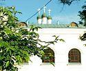В церковной Больнице Святителя Алексия начали проводить тестирование на антитела к COVID-19