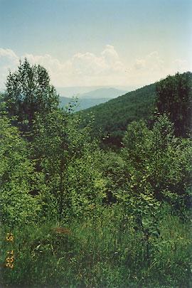 Вид на Чикойские горы от монастыря прп. Варлаама. Фото: А. Поспелов / Православие.Ru