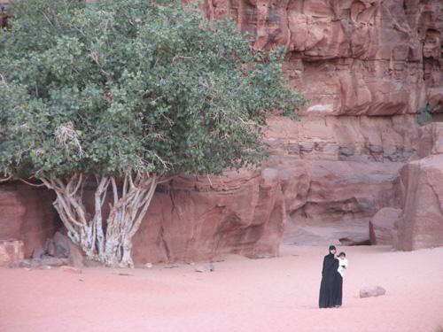 Пустыня Вади-Рам, «Лунная долина», – заповедный уголок Иордании, где бедуины живут, как 2000 лет назад