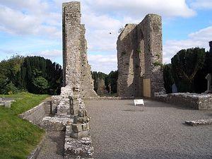 Аббатство Ньютаун в Триме (Ирландия)