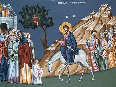 Homily on Palm Sunday