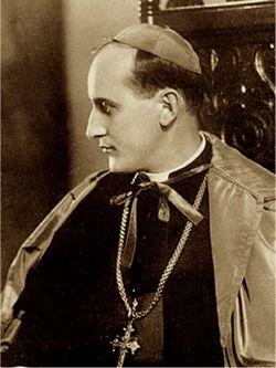 Алоис Степинац