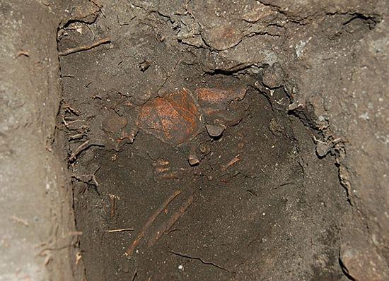 Раскоп с мощами преподобного. 2010 г.