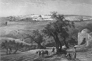 View of Jerusalem from the Mount of Olive. From vol 1, Picturesque Palestine.