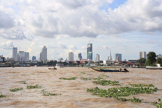 Загрузить увеличенное изображение. 800 x 533 px. Размер файла 150889 b.  Бангкок