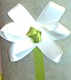 """«""""Белый цветок"""" способен и ребенка научить милосердию»"""