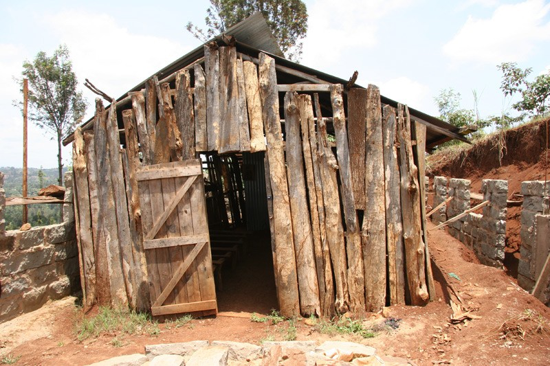 Hope for the Kikuyu.  Photo: Denis Makhanko