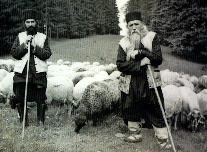 www.pravoslavie.ru/sas/image/100494/49450.b.jpg