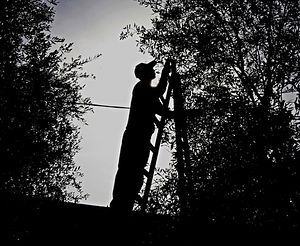Многие болгарские священники работают в Греции на сборе маслин, чтобы прокормить семьи