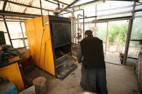 Монастырская теплица отапливается с помощью дровяной печи, от которой по теплице расходятся трубы с водой
