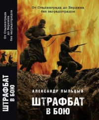 Штрафбат в бою. От Сталинграда до Берлина без заградительных отрядов