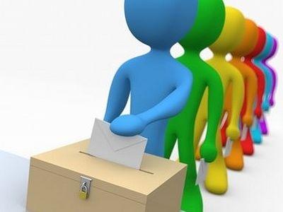 Демократические процедуры