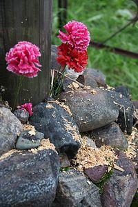 Цветы у основания срубленного креста. 25.08.12