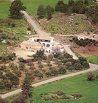 Монастырь святой Феклы в Мосфилоти на Кипре