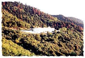 Монастырь Рождества Богородицы Дамастас