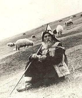 Старец Клеопа (Илие) на пастушеском послушании