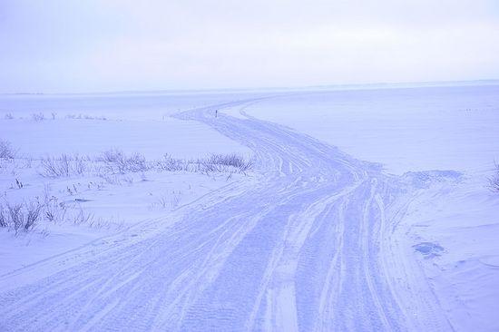 Дорога на Пустозерск