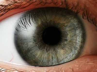 Ухо слышащее и глаз видящий