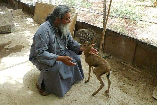Father Chrysostom and the fawn named Cook.