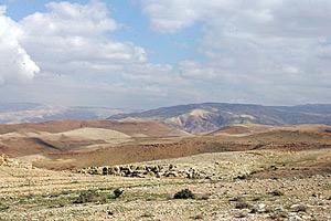 Виды Святой Земли, открывающиеся с горы.