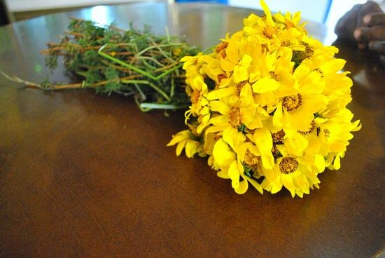 Yellow daisies are collected to mark Ethiopia's religious holiday Meskel. Sept. 27, 2013. Photo: IBTimes/Jacey Fortin