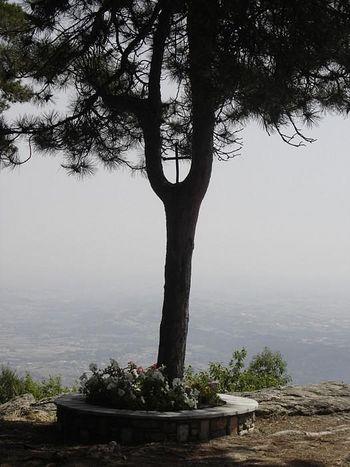 Место, где было произнесено пророчество Космы Этолийского:«Когда упадёт ветка – случится большая беда, которая придёт с направления, куда она будет указывать после падения. Когда упадёт дерево – случится ещё более страшное горе»