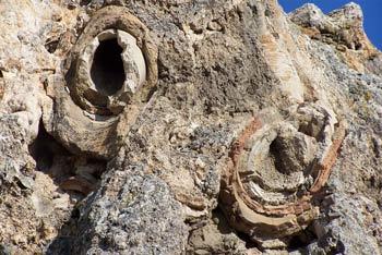 Остатки трубопровода древней Лаодикии