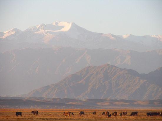 Горы Тянь-Шань (Кыргызстан)