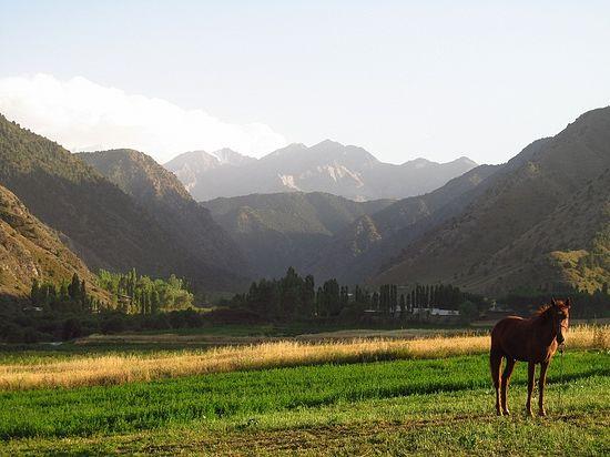 Виды Южного Кыргызстана