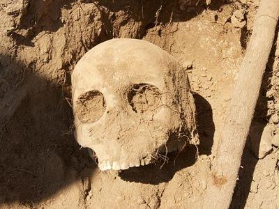 Массовое захоронение армян времен Первой мировой войны обнаружено в Турции