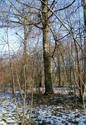 Место мученической кончины Георгия Ефимчука