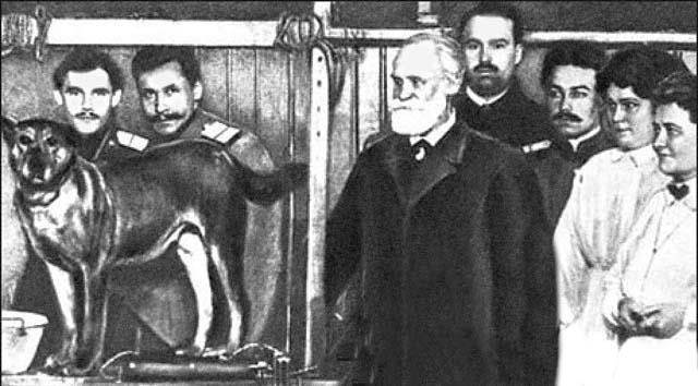 Советская пропаганда, используя результаты опытов проф. И. Павлова на собаках по изучению условных рефлексов, «доказывала», что душа животного (и человека) — всего лишь сложная нервная деятельность