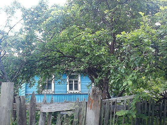 Заброшенная деревня Кострица. Оленинский район Тверской обл.