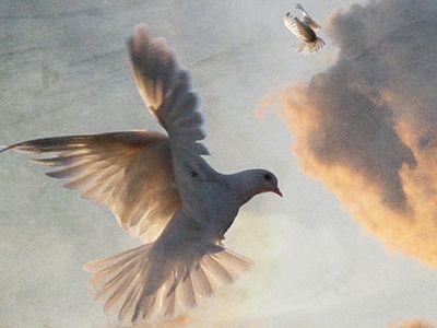 О мире в душе и мире с Богом