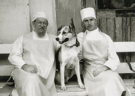 Профессор Преображенский, собака и Борменталь. Кадр со съемочной площадки