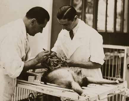 Доктор Воронов и его ассистент с обезьяной на операционном столе
