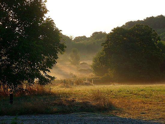 Утро в окрестностях монастыря