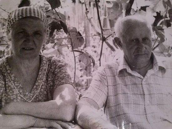 Бабушка Дарья и дедушка Николай