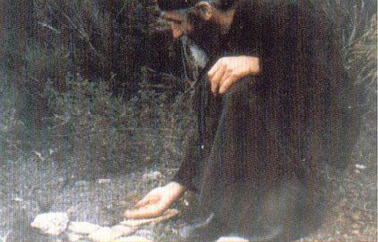 Преподобный кормит с руки маленькую птицу