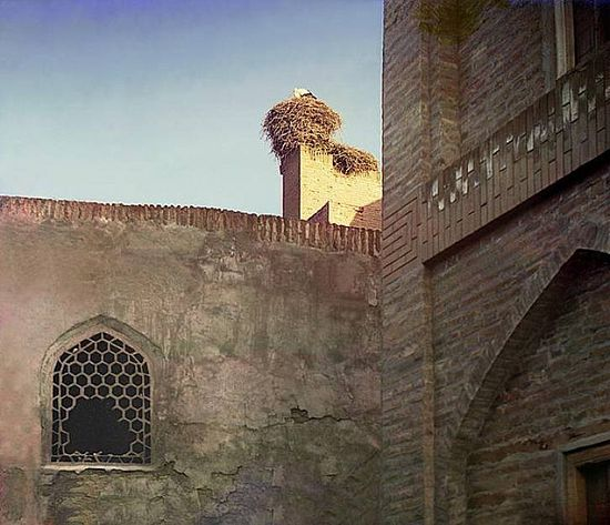 Stork in a nest in Bukhara - between 1909-1915