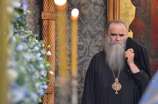 Metropolitan Amfilohije (Radović) of Montenegro. Photo: A.Goryainov / Pravoslavie.ru
