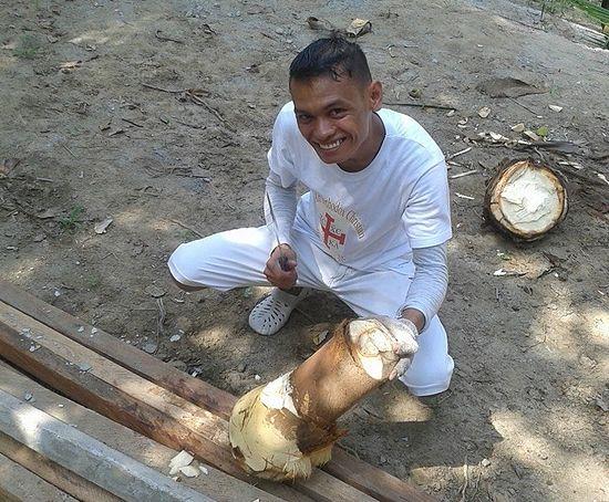 Ренебой готовит кокосовую пальму