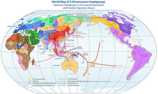 Y-хромосомные гаплогруппы мировой популяции в доколониальный период