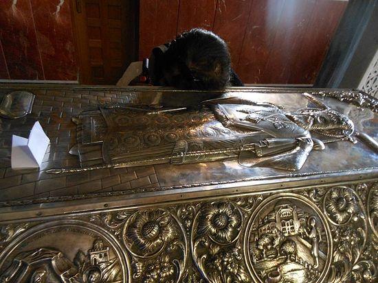 Prayer at the relics of St. Nektarios