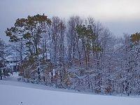 Первый снег на Покров